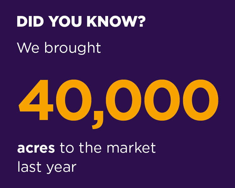 We brought 40,000 acres to the market last year