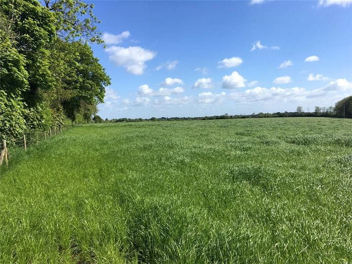 14.8 acres Land, The Shoe, North Wraxall SN14 - Sold