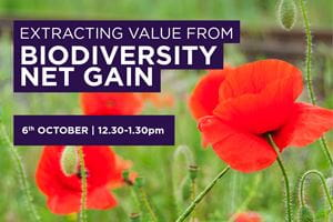 EXTRACTING VALUE FROM BIODIVERSITY NET GAIN